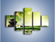 Obraz na płótnie – Bambus i źródło wody – pięcioczęściowy K930W1