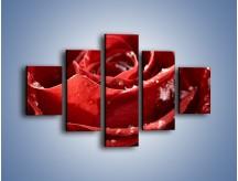 Obraz na płótnie – Chłód w różanych płatkach – pięcioczęściowy K932W1