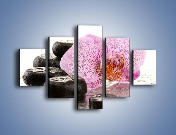 Obraz na płótnie – Kwiat otoczony kamieniami – pięcioczęściowy K967W1