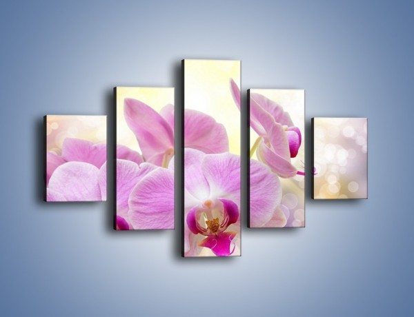 Obraz na płótnie – Lila kwiaty o poranku – pięcioczęściowy K976W1