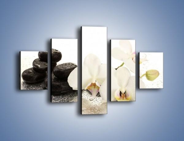 Obraz na płótnie – Mokre kwiaty i kamienie – pięcioczęściowy K986W1