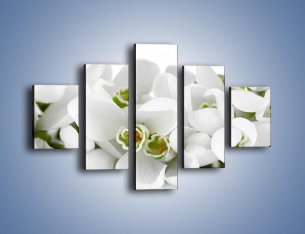 Obraz na płótnie – Niewinne kwiaty z zielonymi oczkami – pięcioczęściowy K988W1