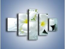 Obraz na płótnie – Białe kwiaty w potoku – pięcioczęściowy K991W1