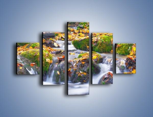 Obraz na płótnie – Liście na wodospadzie – pięcioczęściowy KN002W1