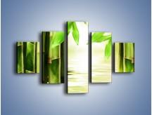Obraz na płótnie – Bambusowe liście i łodygi – pięcioczęściowy KN027W1