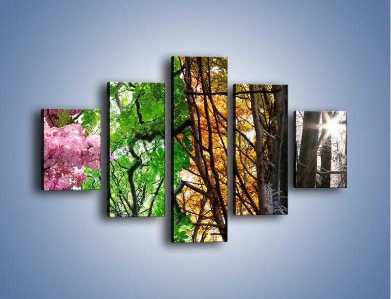 Obraz na płótnie – Drzewa w różnych kolorach – pięcioczęściowy KN037W1