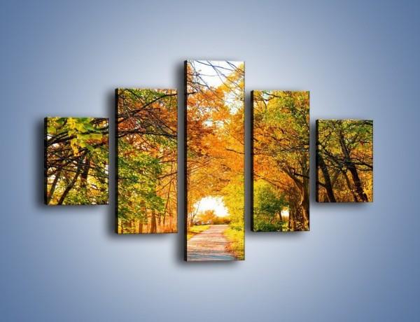 Obraz na płótnie – Jesienna drogą – pięcioczęściowy KN064W1