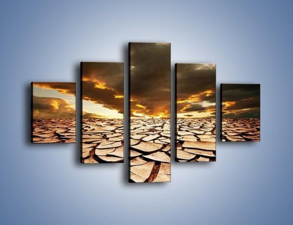 Obraz na płótnie – Ziemia spragniona wody – pięcioczęściowy KN078W1
