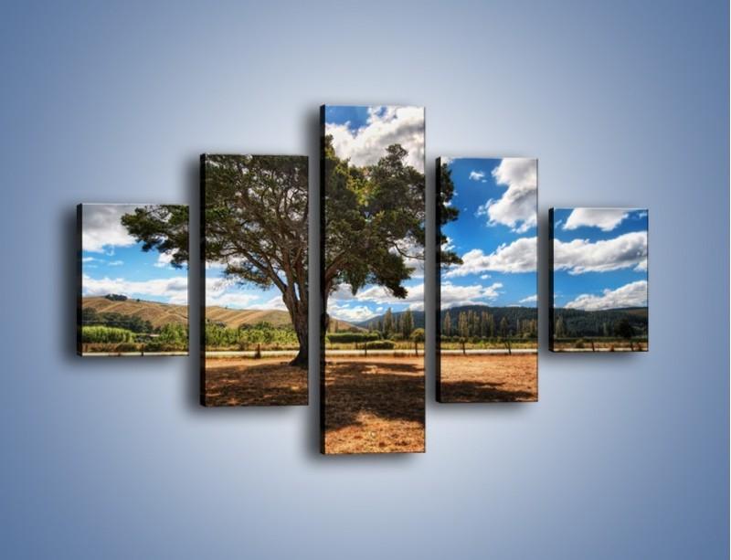 Obraz na płótnie – Cień pod rozłożystym drzewem – pięcioczęściowy KN1037W1