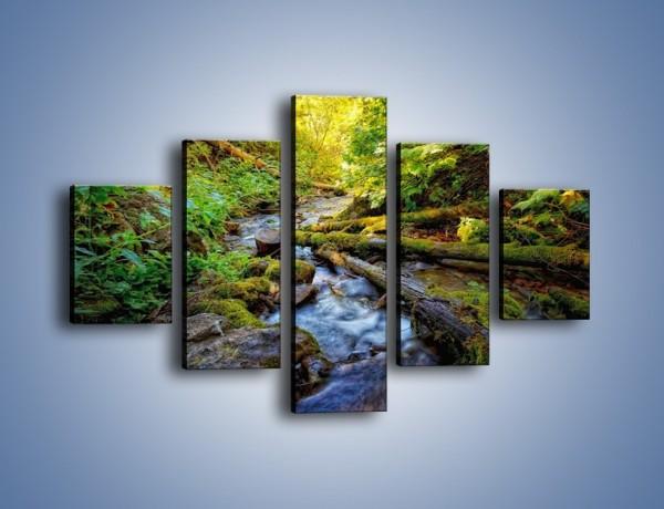 Obraz na płótnie – Drewno ścięte do wody – pięcioczęściowy KN1059W1