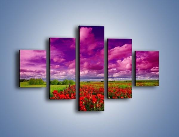Obraz na płótnie – Maki nad fioletowymi chmurami – pięcioczęściowy KN1079AW1