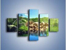 Obraz na płótnie – Bogata roślinność nad wodą – pięcioczęściowy KN1082AW1