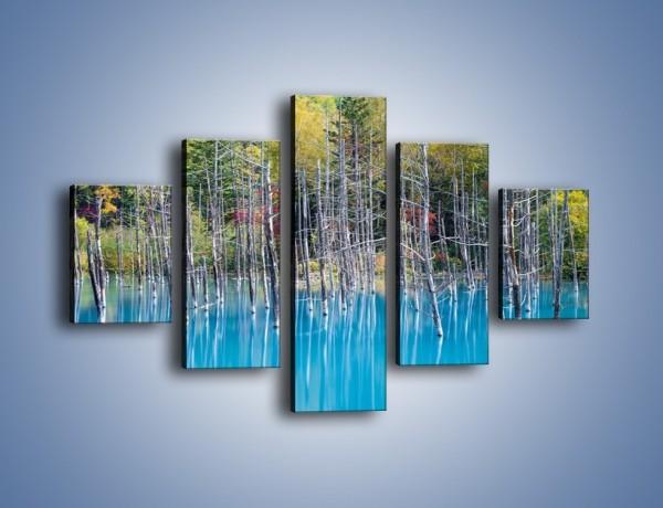 Obraz na płótnie – Drzewka w wodnej kąpieli – pięcioczęściowy KN1083AW1