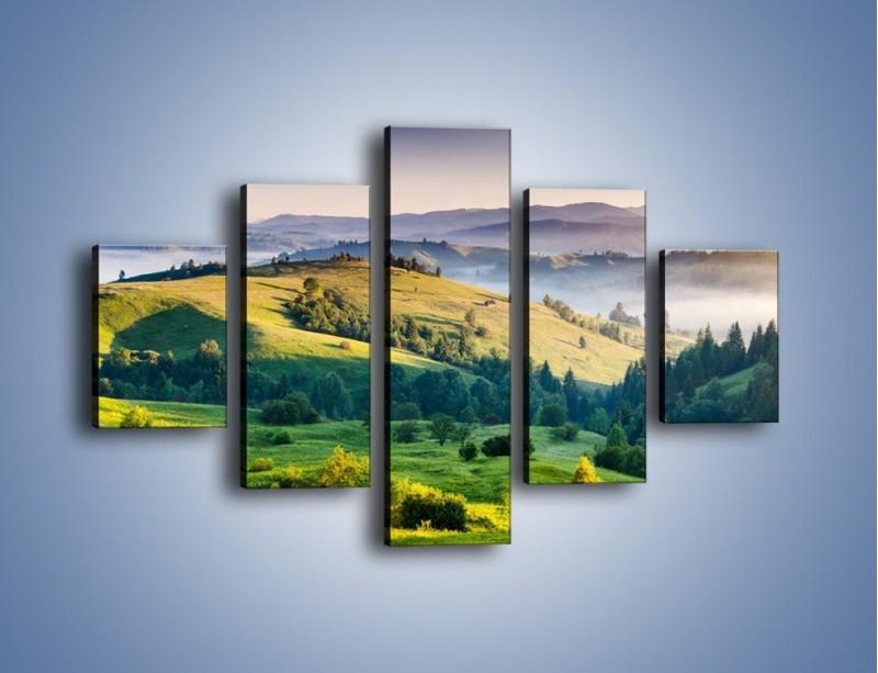 Obraz na płótnie – Tylko zieleń i góry – pięcioczęściowy KN1084W1