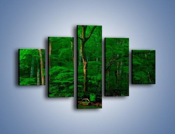 Obraz na płótnie – Mocno zarośnięty las – pięcioczęściowy KN1089AW1