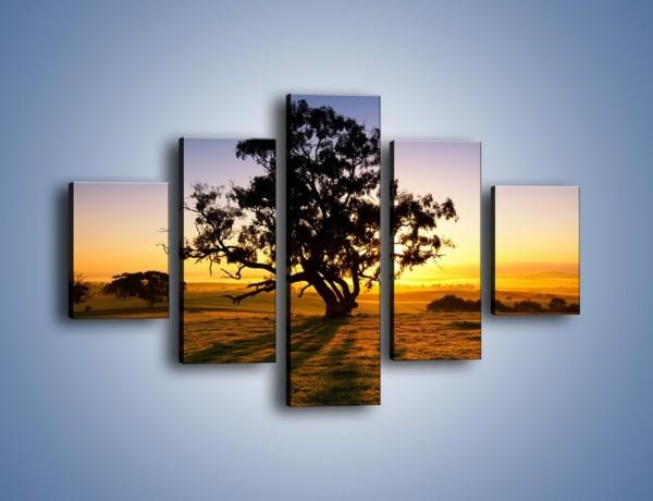 Obraz na płótnie – Drzewa w oddali – pięcioczęściowy KN1095W1