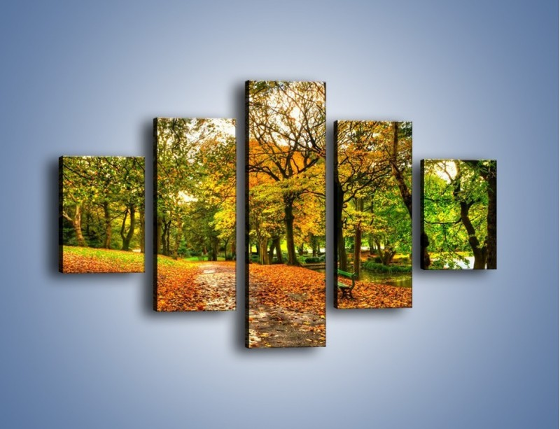 Obraz na płótnie – Piękna jesień w parku – pięcioczęściowy KN1098AW1