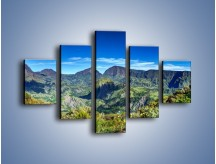 Obraz na płótnie – Cały góry pokryte zielenią – pięcioczęściowy KN1140AW1