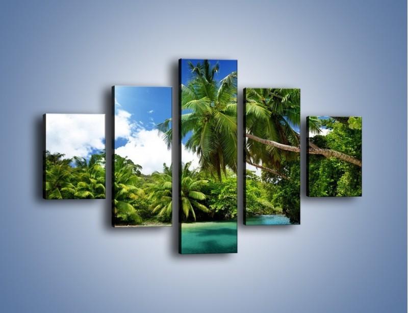 Obraz na płótnie – Rozłożone palmy i woda – pięcioczęściowy KN1168AW1