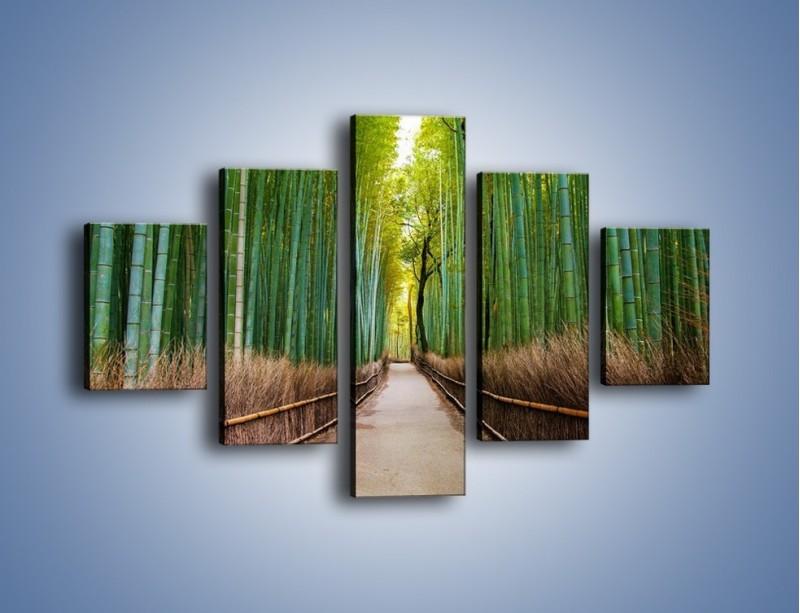 Obraz na płótnie – Bambusowy las – pięcioczęściowy KN1187AW1