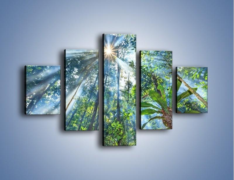 Obraz na płótnie – Dyzio marzyciel i drzewa – pięcioczęściowy KN1189AW1