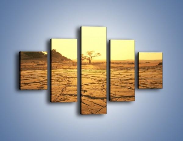 Obraz na płótnie – Ziemia zorana słońcem – pięcioczęściowy KN1221AW1