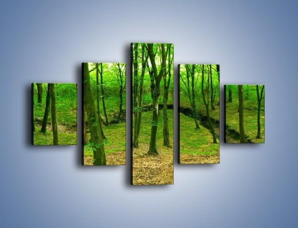 Obraz na płótnie – Wąskie spojrzenie na las – pięcioczęściowy KN1264AW1