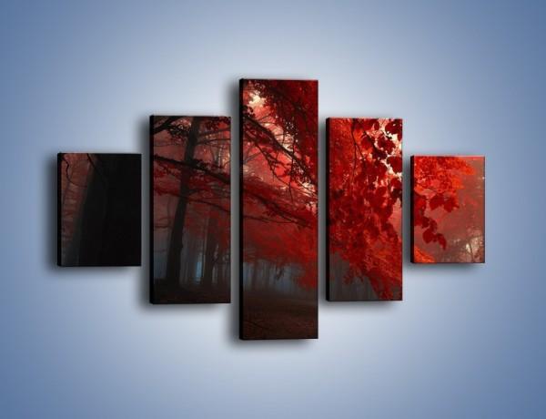 Obraz na płótnie – Smutna jesień lasu – pięcioczęściowy KN1267AW1