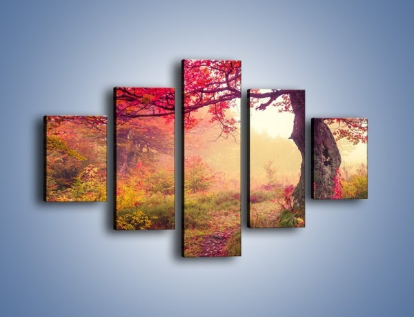 Obraz na płótnie – Kolorowa dzika łąka – pięcioczęściowy KN1268AW1