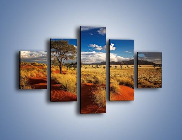 Obraz na płótnie – Czerwony piasek i roślinność – pięcioczęściowy KN1290AW1