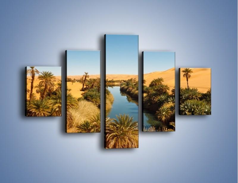Obraz na płótnie – Woda woda na pustyni – pięcioczęściowy KN1294AW1