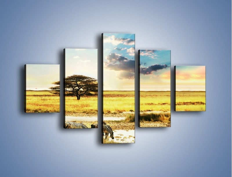 Obraz na płótnie – Zebry na sawannie – pięcioczęściowy KN1298AW1