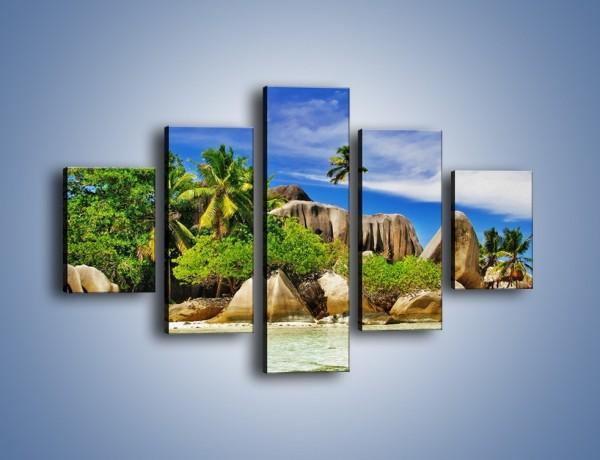 Obraz na płótnie – Tropiki i ich wysokości – pięcioczęściowy KN1306AW1