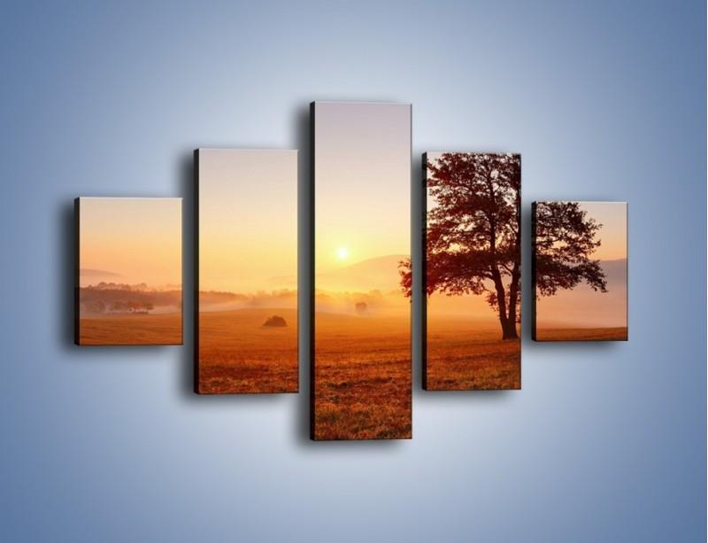 Obraz na płótnie – Krajobraz utopiony we mgle – pięcioczęściowy KN1331AW1