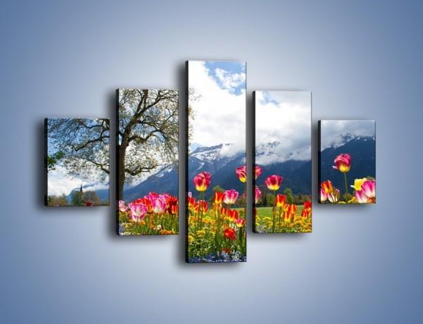 Obraz na płótnie – Tulipanki i ich towarzysze – pięcioczęściowy KN1333AW1