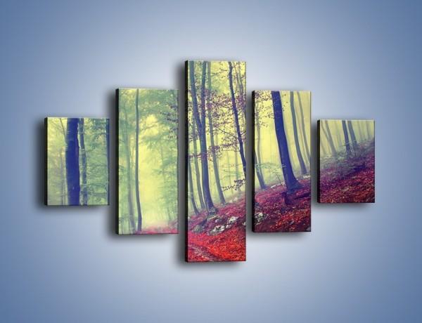 Obraz na płótnie – Bardzo wąską ścieżką leśną – pięcioczęściowy KN1335AW1