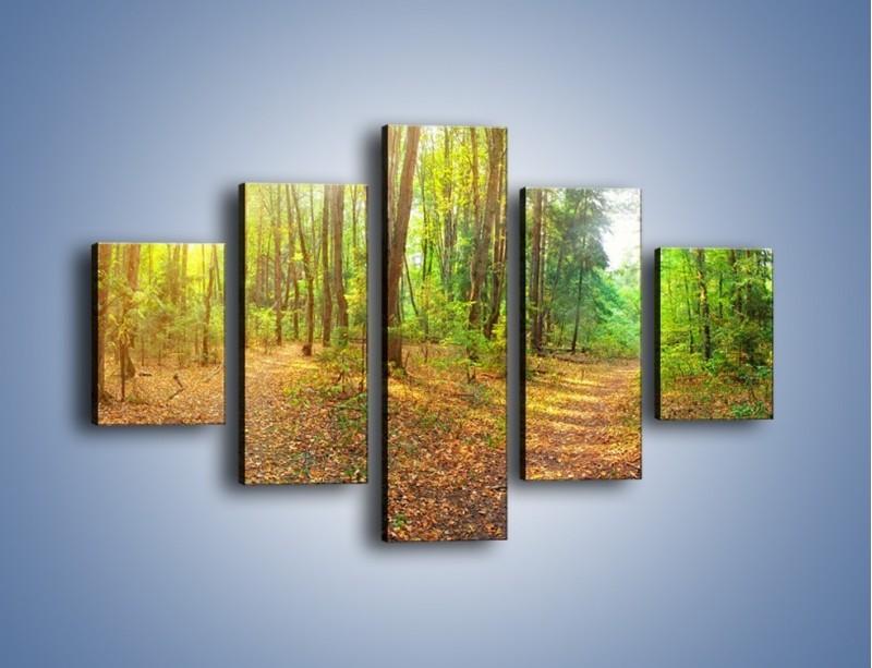 Obraz na płótnie – Przejrzysty piękny las – pięcioczęściowy KN1344AW1