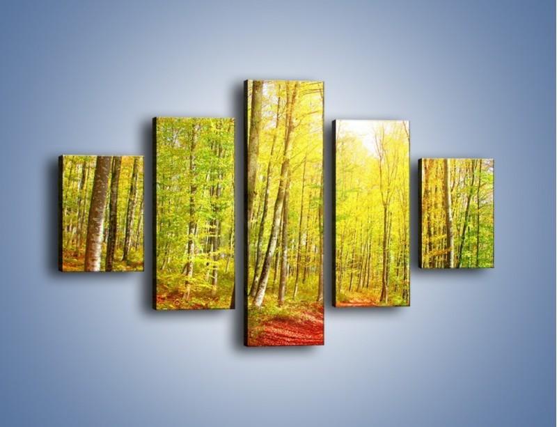 Obraz na płótnie – Brzózki liście i las – pięcioczęściowy KN1345AW1