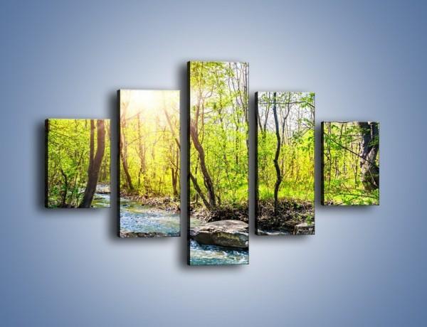Obraz na płótnie – Opuszczony las wiosną – pięcioczęściowy KN1350AW1