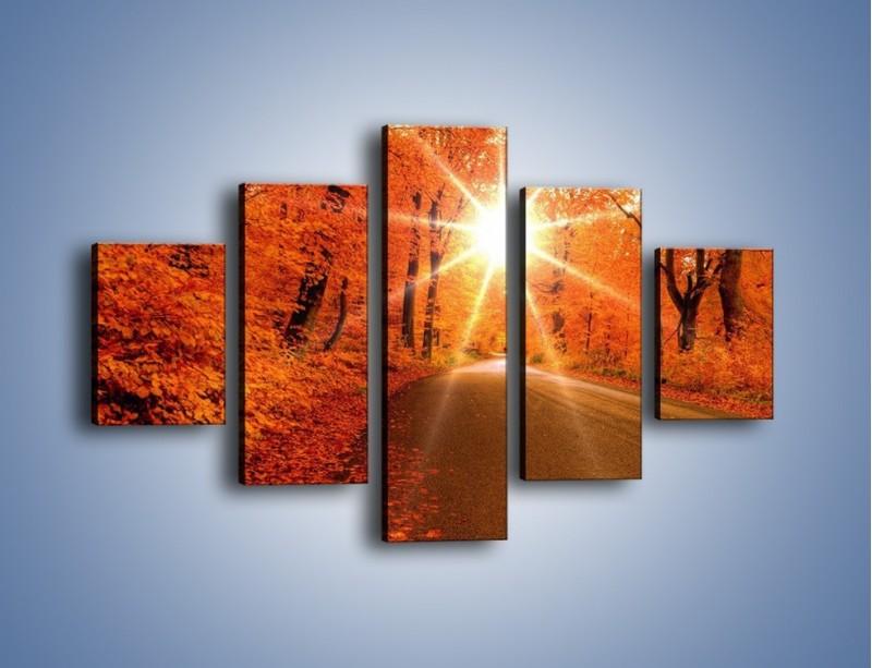 Obraz na płótnie – Droga pełna słońca – pięcioczęściowy KN160W1