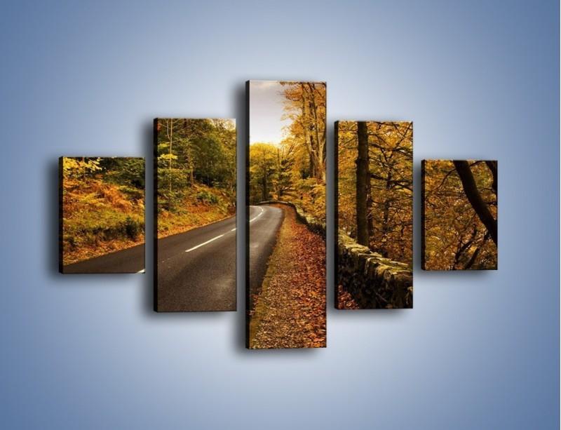 Obraz na płótnie – Asfaltową droga przez las – pięcioczęściowy KN169W1