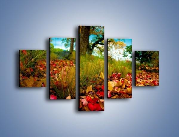 Obraz na płótnie – Droga usłana liśćmi – pięcioczęściowy KN172W1