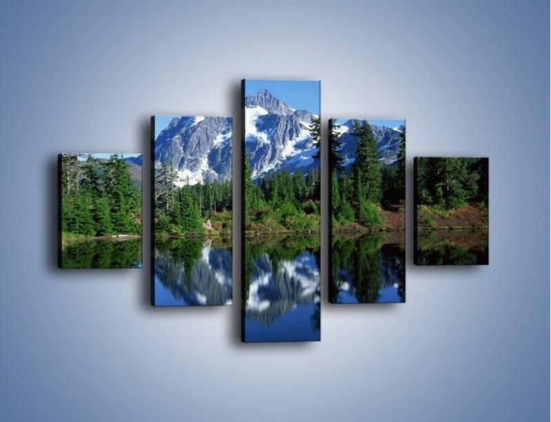 Obraz na płótnie – Zimowe pozostałości w górach – pięcioczęściowy KN225W1