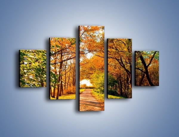 Obraz na płótnie – Słoneczna leśna szosa – pięcioczęściowy KN325W1