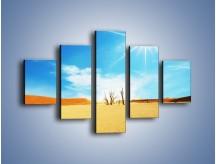 Obraz na płótnie – Błękit nieba i słońce w ziemi – pięcioczęściowy KN331W1