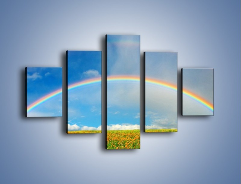 Obraz na płótnie – Urok kolorowej tęczy – pięcioczęściowy KN406W1