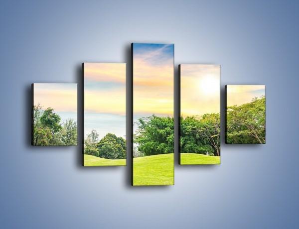 Obraz na płótnie – Faliste podłoże w zieleni – pięcioczęściowy KN495W1