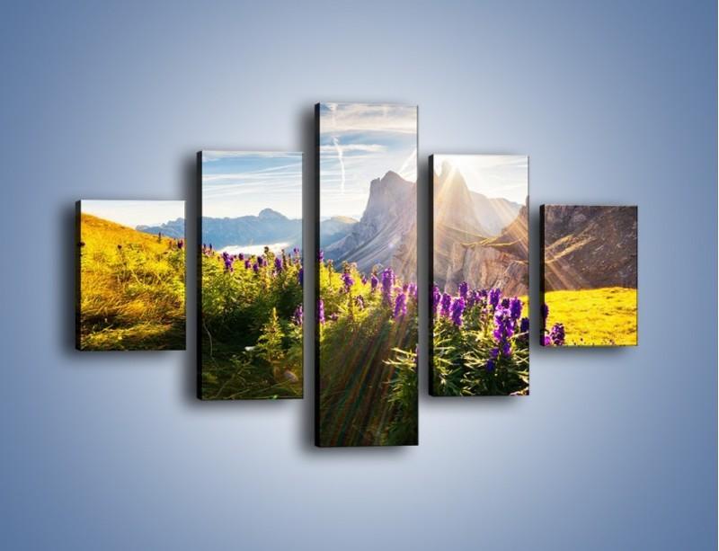 Obraz na płótnie – Góry w poświacie słońca – pięcioczęściowy KN502W1