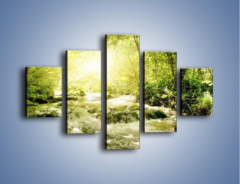 Obraz na płótnie – Wzburzony potok leśny – pięcioczęściowy KN508W1