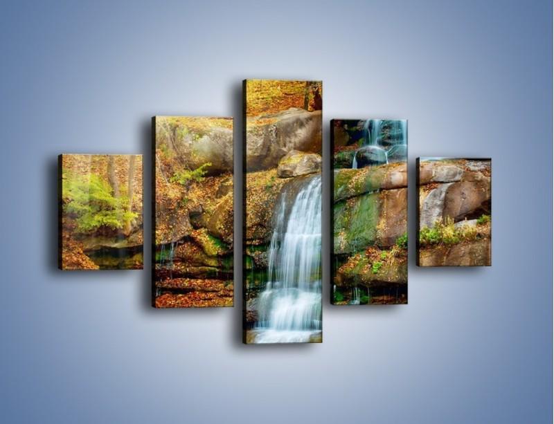 Obraz na płótnie – Leśne podłoże późną jesienią – pięcioczęściowy KN563W1
